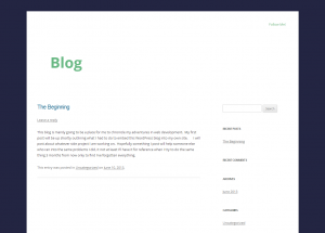 blog_wp_theme_after